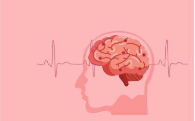 The Brain Dance